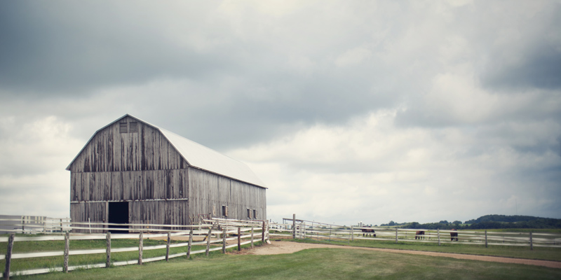 Horse Barn at huntington Farms